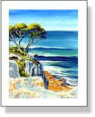 Shelly Beach Cliff View